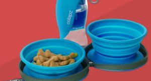 Colapz-bowls