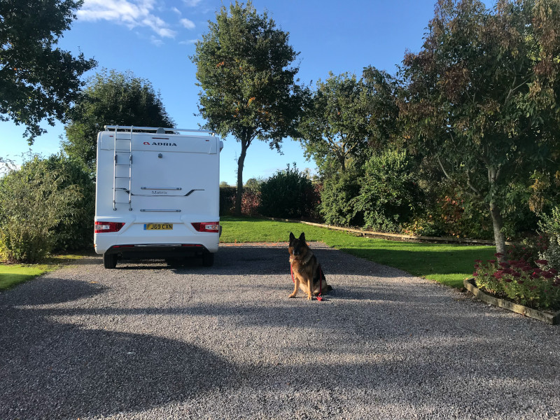 Here We Tow - Motorhoming with Dogs: 5 Top Tips